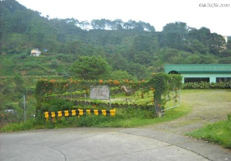 Eve's Garden facade