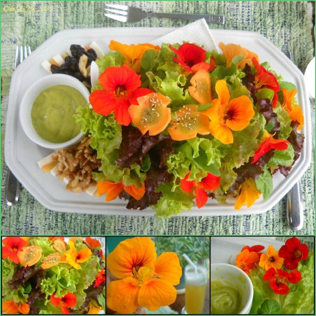 Eve's Garden salad