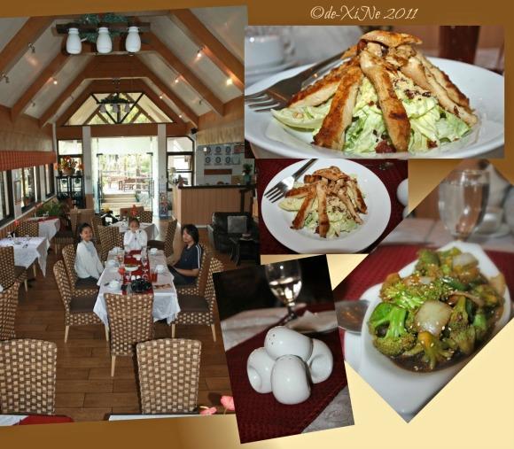 Zenz Restaurant scene, salad, viand, and salt&pepper shaker 'art'