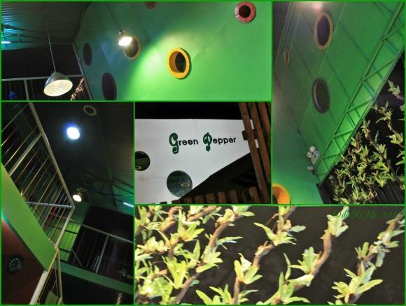 Green Pepper scene