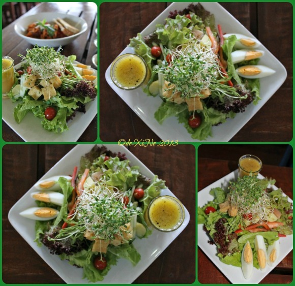 Health 100 gado gado salad