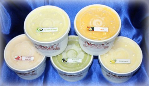 Nora's Homemade Sorbet flavors circa July 2013