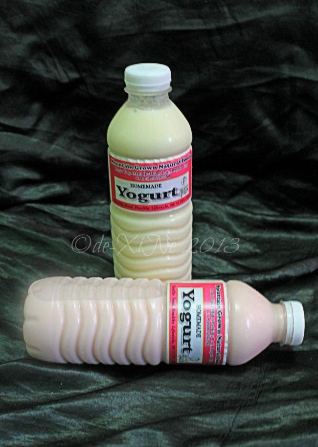 Mountain Grown Organic yogurt drink