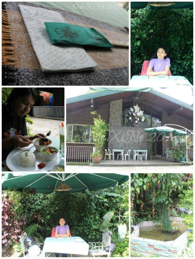 dining at Chaya Japanese Restaurant yard