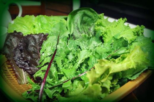 Wellbeing Ssampbap Korean Restaurant Baguio leafy greens and maroons