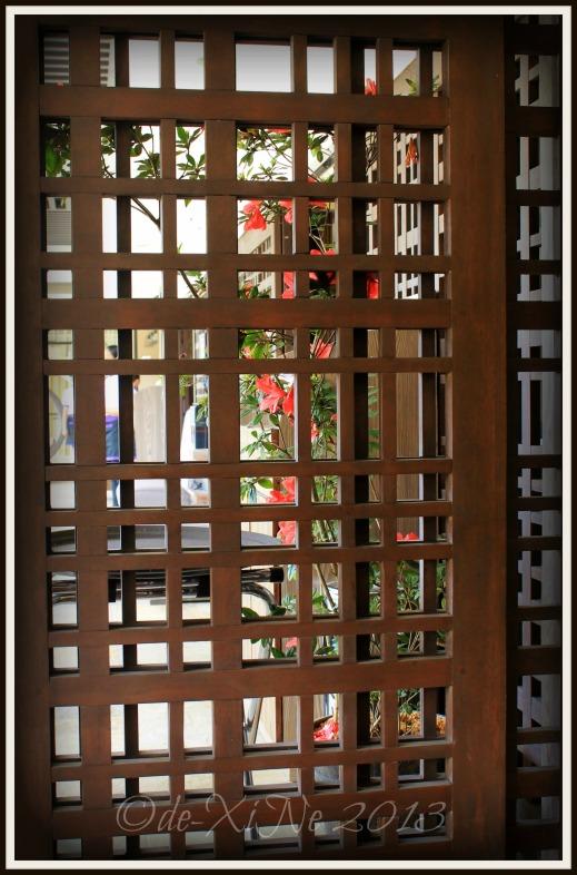 Rasa Pura Baguio doors/ dividers