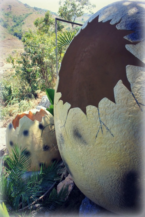 Dinosaurs Island Baguio hatched eggs