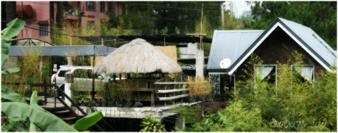 Baguio 888 Tiptop Arca's Yard 2011