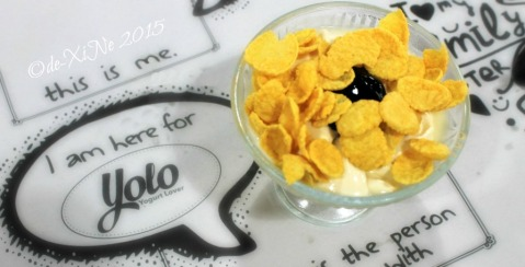 Baguio Calajo Foodhouse YOLO yogurt 2015