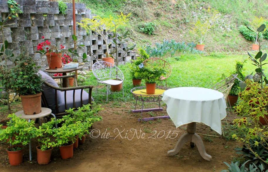 a section of metro Baguio Masters Garden. A Healthful Celebration of Accomplishments at the Master s Garden