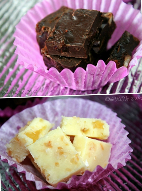 2016-07-09 Baguio Judge Fudge (7) fruit n nut and pina collada fudge