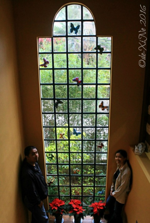 2016-12-09-baguio-le-coq-floral-touch-of-provence-in-city-of-pines-16 windows and stairways