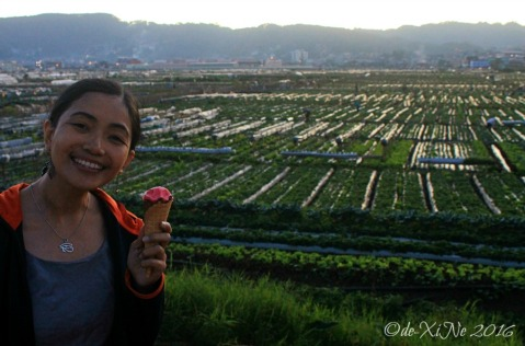 having strawberry ice cream at the La Trinidad metro Baguio strawberry farm