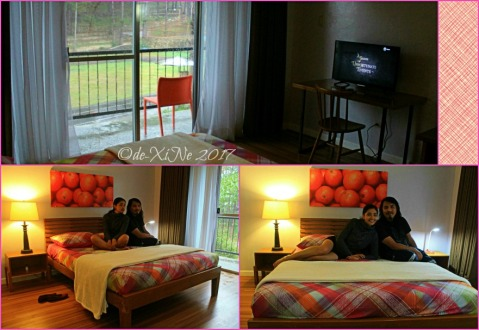 Baguio Ozark Bed and Breakfast staycation watching Netflix Series of Unfortunate Events